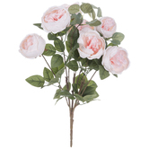 Light Pink Cabbage Rose & Silver Dollar Eucalyptus Bush
