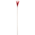 Red Feather Pick