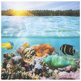 Reef Fish Canvas Wall Decor
