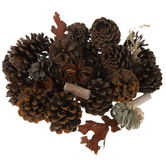 Pinecone & Birch Potpourri