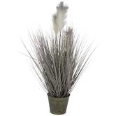 Reed Grass In Metal Pot