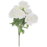 Cream Rose Bush