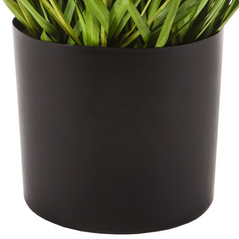 Curved Grass Potted Plant