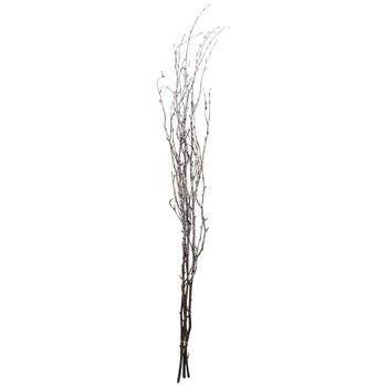 Ice Crystal Birch Branch