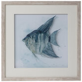 Watercolor Fish Framed Wall Decor