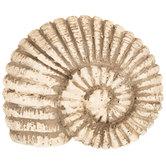 Conch Shell Knob