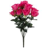 Hot Pink Rose Bush