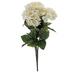 Cream Hydrangea Bush