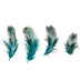 Turquoise Pheasant Almond Feathers