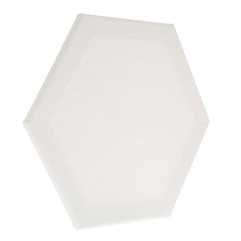 Hexagon Blank Canvas