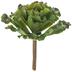 Ruffled Echeveria Succulent Flower Pick