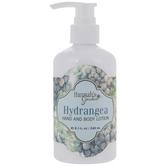 Hydrangea Hand & Body Lotion