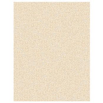 "Cream Country Crackle Scrapbook Paper - 8 1/2"" x 11"""
