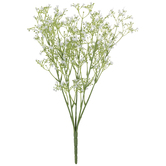 White New Love Gypsophila Bush