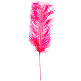 Hot Pink Dyed Ostrich Feather Pick
