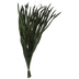 Green Whispering Grass Bundle