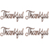 Copper Thankful Metal Words