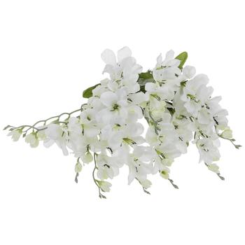 White Freesia Bush