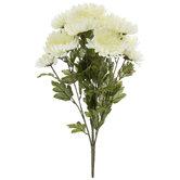 White Mum Bush