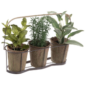 Potted Herbs In Metal Basket