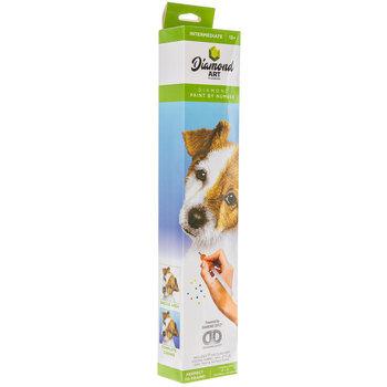 Puppy Diamond Art Intermediate Kit
