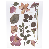 Dried Flowers & Leaves Removable Stickers