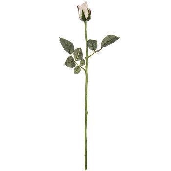 White Princess Rose Bud Stem