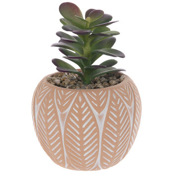 Succulent In Etched Pot