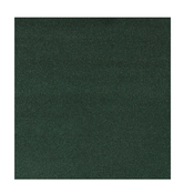 "Dark Green Grass Mat - 34"" x 50"""