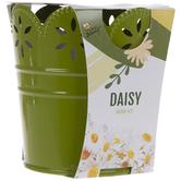 Daisy Flower Grow Kit