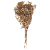 Natural Gypsy Grass Bundle