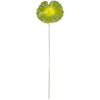 Green Lotus Leaf Stem