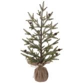 Pinecone Spruce Tree