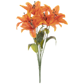 Orange Tiger Lily Bush