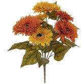 Orange & Yellow Teddy Bear Sunflower Bush