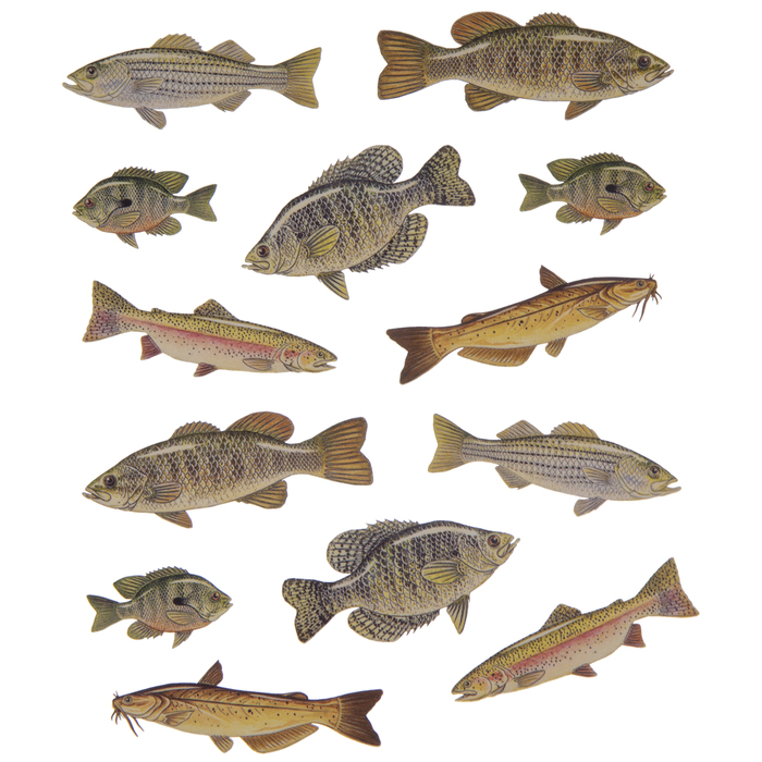 Fish Sticker!