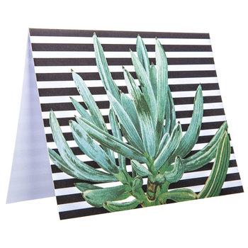 Botanical Box of Cards