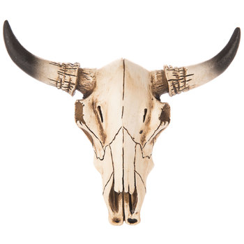 Cow Skull Wall Decor - Small