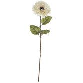Cream Teddy Bear Sunflower Stem