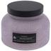 Iridescence Jar Candle - 17.58 Ounce