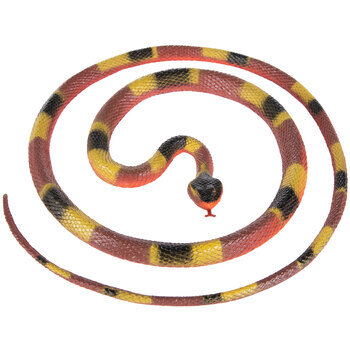 Coiled Coral Snake