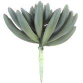Green & Gray Succulent Pick