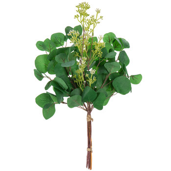 Eucalyptus Bundle With Green Berries