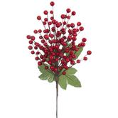 Holly Berries Pick