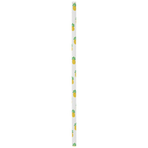 Pineapple Paper Straws