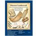 Discover Leathercraft Kit