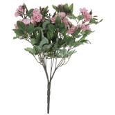 Pink Mini Rose Bush