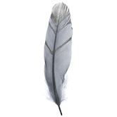 "Gray & Silver Fancy Goose Feathers - 7"" - 8"""