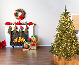 Christmas Tree Basics: Fluffing & Lighting Video